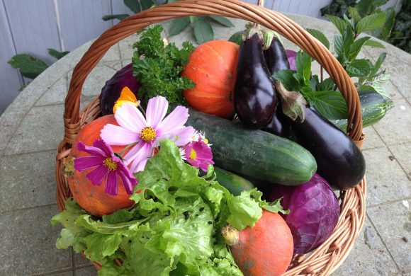 Envie de jardinage ?